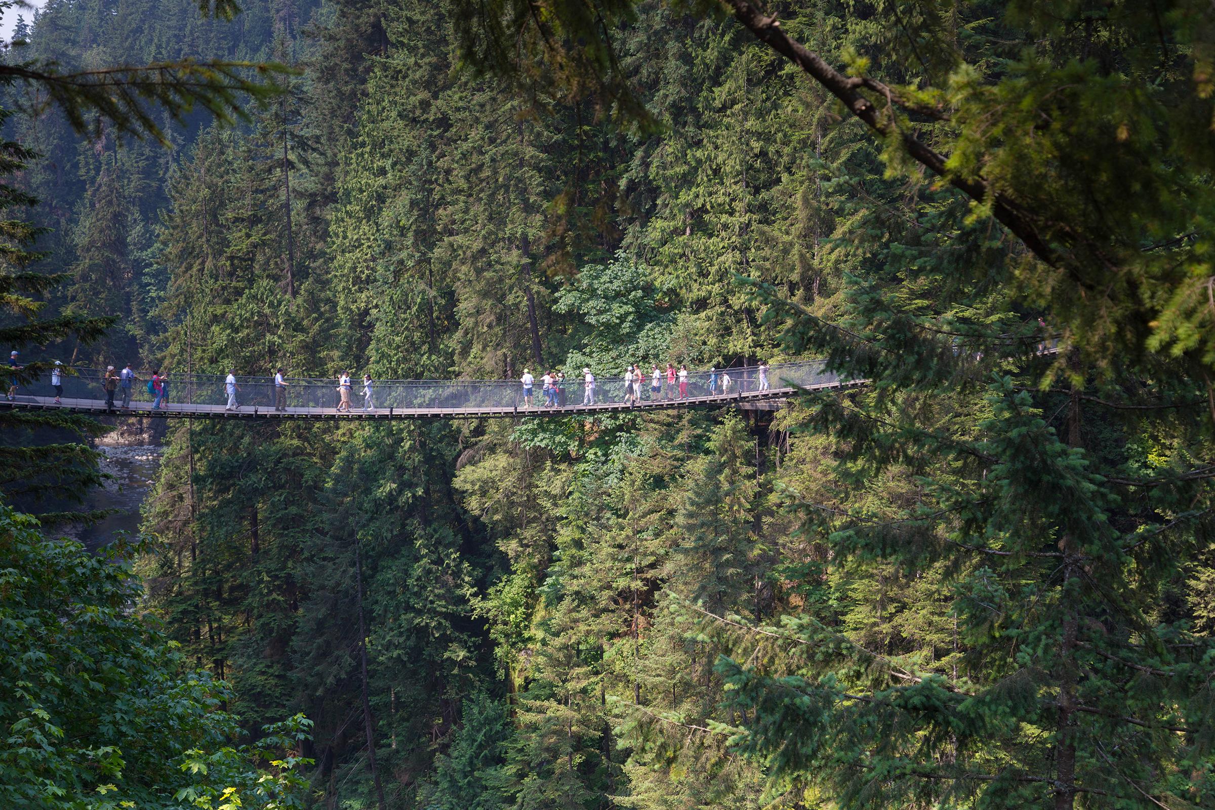 Caliplano Suspension Bridge