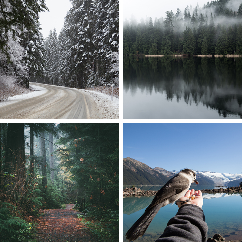 4 images of landscape shot in BC